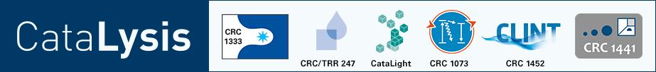 Logo Catalysis Networkgross